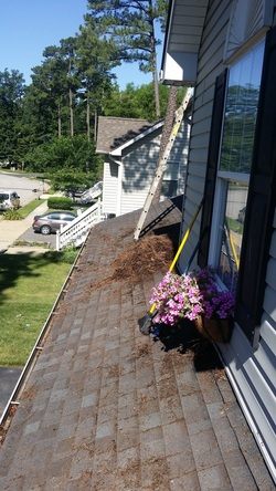 Ridgely Md Gutter Cleaning And Repairs Bk Handyman
